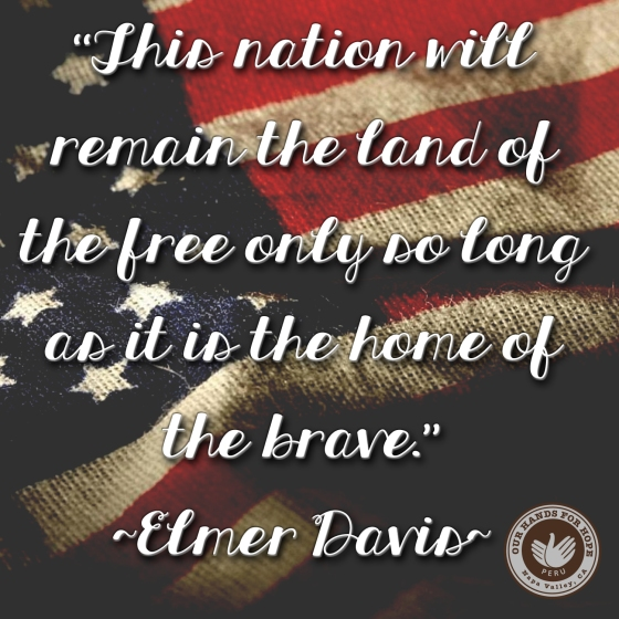 veterans day, usa, patriotism